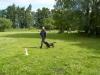 hundetraining-004