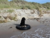 langeland-oktober_2012-078-small