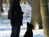 hundetraining-februar-2012-041-small