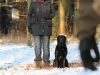 hundetraining-februar-2012-046-small